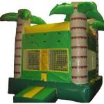 Tropical Bouncy Castle